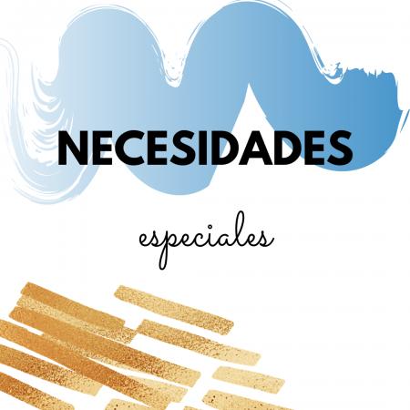 N-Necesidades especiales